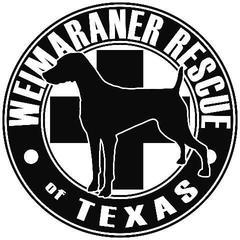 Weimaraner Rescue of North Texas
